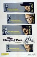 L'albero degli impiccati