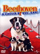 Beethoven - A caccia di Oss… car!