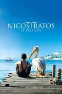 Nicostratos - pelikaani