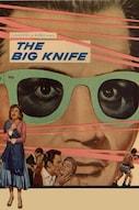 Il grande coltello