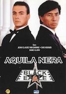 Black eagle - Aquila nera