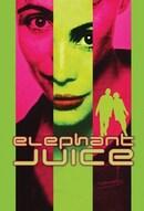 Elephant Juice - Un caimano nel soggiorno