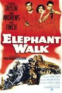 La pista degli elefanti