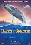 Havets Giganter - Pukkelhvalernes Liv